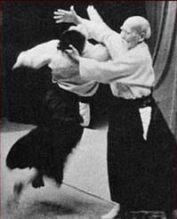 O-sensei Aikido