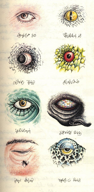 Codex eyes taxonomy